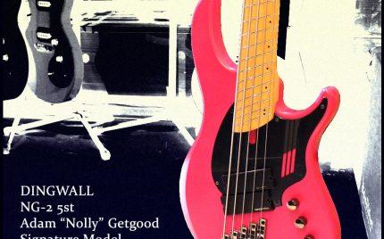 """DINGWALL NG-2 5st Adam """"Nolly"""" Getgood Signature Model ディングウォール ファンドフレット 5弦ベース アクティブ 美品 18029001"""
